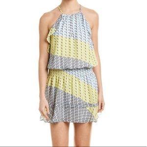 NWT Parker Ruffle Drop Waist Dress Size M